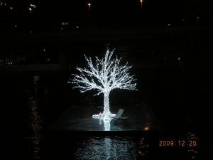 泉の中の 幻想的な光